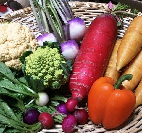 珍し野菜セット