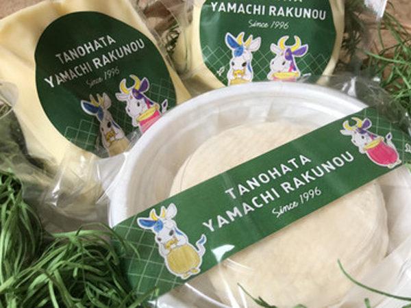 自然放牧の2つの牧場の乳製品の販売が始まりました!