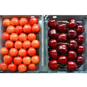 cherry-satonishiki&samitto