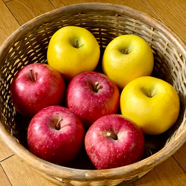 morioka-fruits-set-winter
